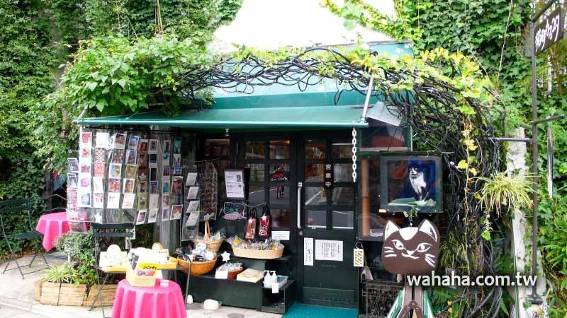 2010日本行:東京的貓咪咖啡店「谷中.猫町カフェ29」