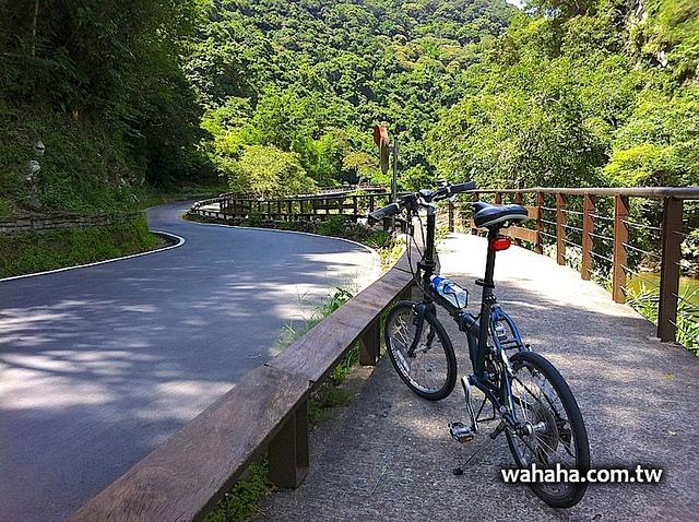 值得一遊的坪林自行車道