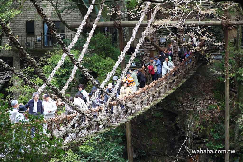 日本三奇橋之「祖谷のかずら橋(祖谷蔓橋)」