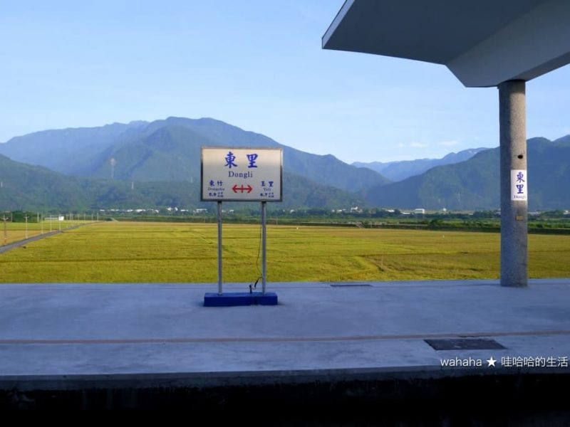 2020花東旅行 – 台鐵東里車站 – 居高臨下欣賞縱谷田園景色的高架車站