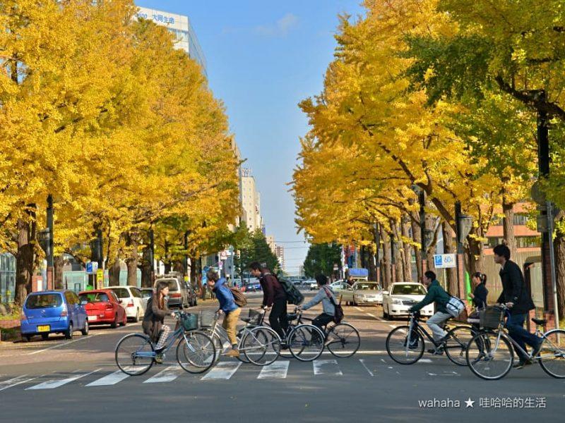 旅遊回顧 – 札幌市代表性的道路景觀 – 北3条通