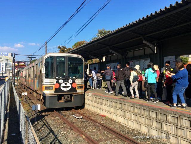 熊本電鐵熊本熊電車