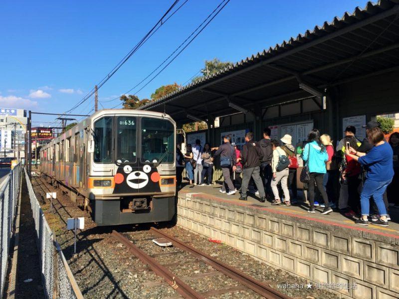 旅遊回顧 – 原來台灣鄉親是商品採購大戶! – 熊本電鐵「熊本熊くまモン」彩繪電車
